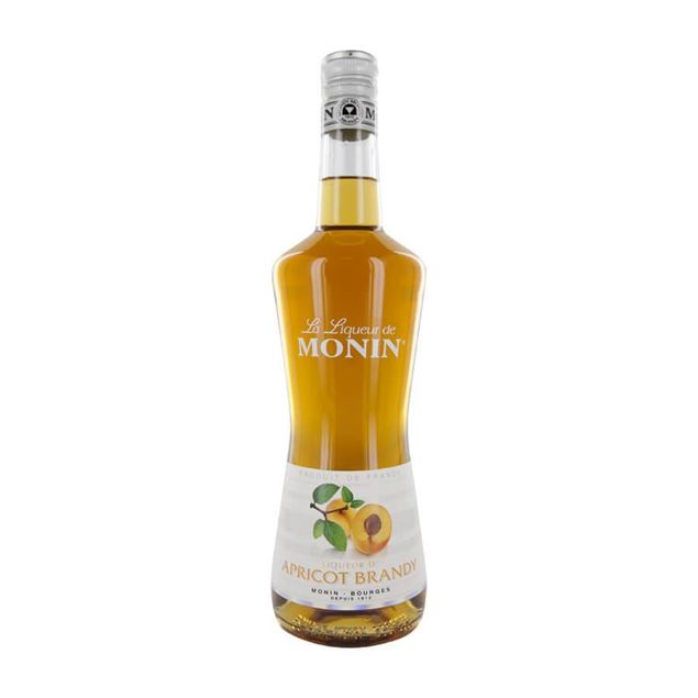 Picture of Monin Apricot